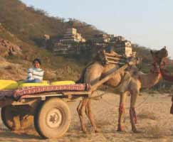 Kumbhalgarh Package